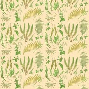 Fern Botanical ~ Parchment  ~ Wee