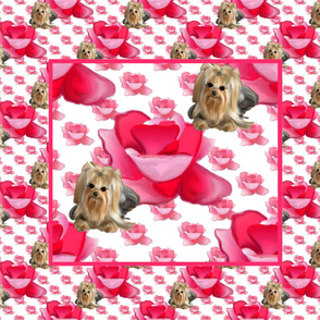 A Rose is a Rose Yorkie Panel