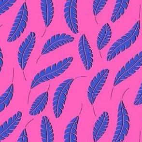 Feathers plain pink blue black