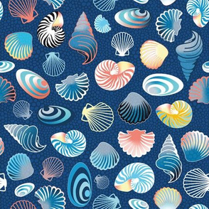 colorful sea shells on blue – small scale