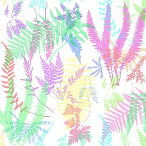 Fern Botanical ~ Spring Fling