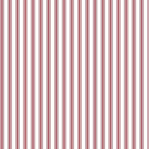 Ticking Stripe Rose