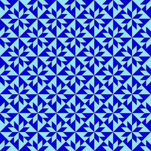Blue Harlequin