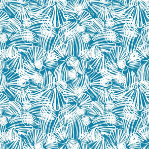 White Scallop on Ocean Blue