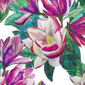 Magnolia love nature