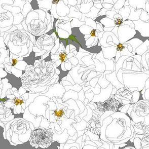 Roses - White on grey