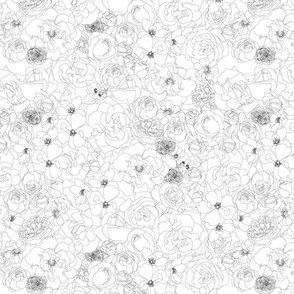 Roses - line drawing