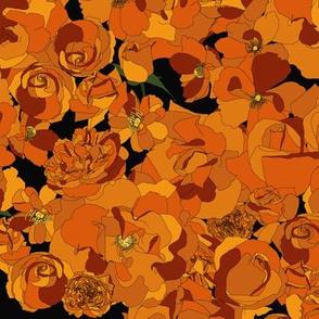 Roses - orange on black