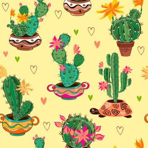 Southwestern Cactus Potted Plants