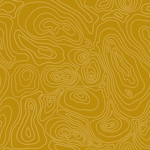 Topographic Map-Gold