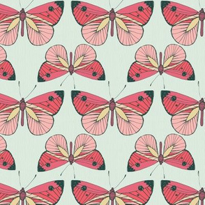 Rows of Red Pink Butterflies