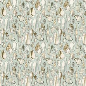 Shells - Small - Aqua