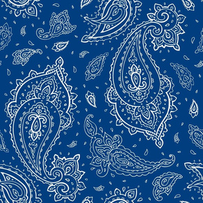 Bandana Paisley White on Navy