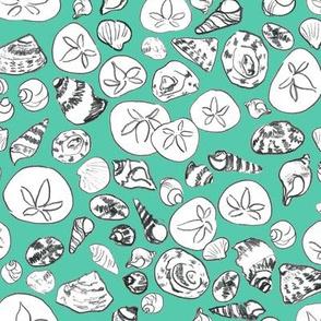 Seashells  Lime Green
