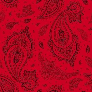 Bandana Paisley Black on Red
