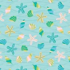 Beach with sea shells