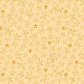 Sand yellow starfish texture