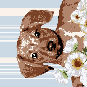 Dappled Puppy Tea Towel Dachshund with Stripes