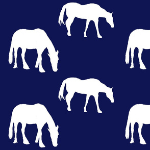 horses for starry sky