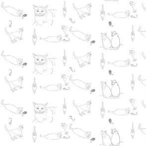 Coloring Cats