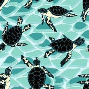 Sea Turtle Hatchlings on Aqua by ArtfulFreddy