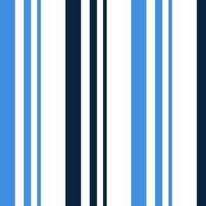 The Red the Blue the Navy and the Gray: 2-Color Graduated Stripes on White