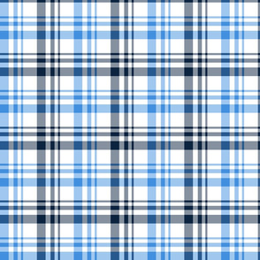 The Red the Blue the Navy and the Gray: Blue Navy and White Plaid