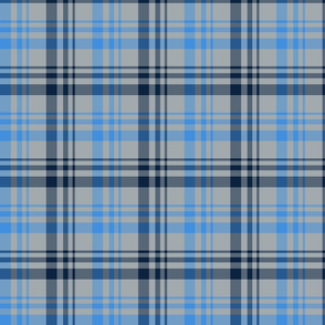 The Red the Blue the Navy and the Gray: Blue Navy and Light Gray Plaid