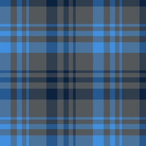 The Red the Blue the Navy and the Gray: Blue Navy and Dark Gray Plaid
