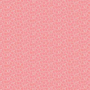 Sweet Frangipani - White on Salmon Pink
