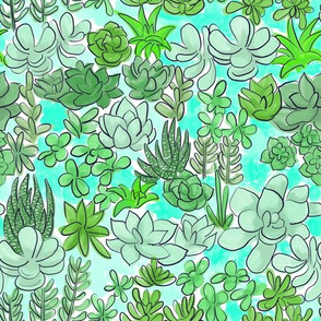 Succulent Garden Green