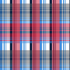 The Red the Blue the Navy and the Grays: Blue Navy Red and White Plaid