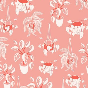 home plants texture in salmon pink