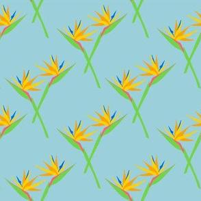 bird-of-paradise-flower_PA_10020-61