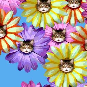 Kittens in Bloom