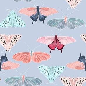 Light blue butterfly friends
