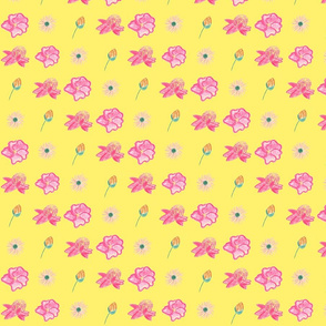 Austrailian Flowers 3000 x 3000-ed-ch