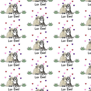 SheepwithBeardieHeartsLuvSmall