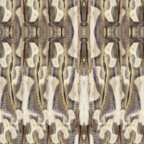 19-09t Snakeskin Snake Abstract Ivory Gray Brown Tan