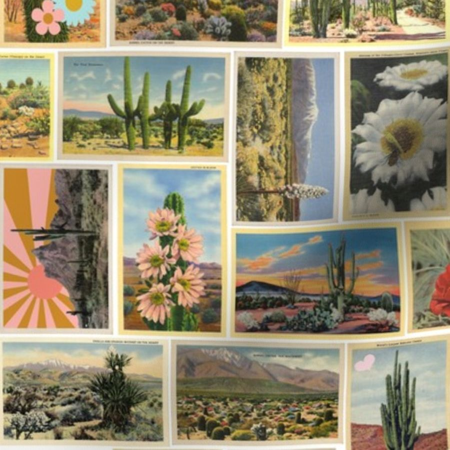 Fabric by the Yard Painted Desert* || vintage postcards 20s 70s super  graphics flowers cactus Wild West western shooting star sunrise sunset  flowers