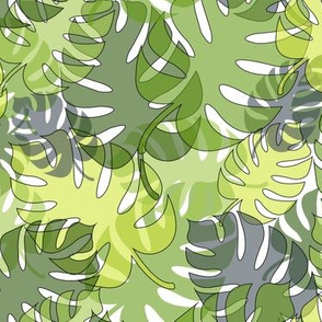 Tropical Leaves, Summer Foliage
