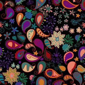 Bright Floral Paisley on Black