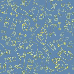 Fitness Animals Yellow on Blue