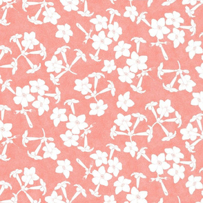 Puakenikeni Blossoms on White Zin 600