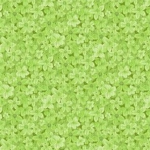 Star Bursts GOLD ©Julee Wood