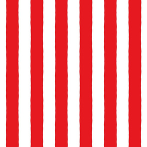Broad Stripes RED ©Julee Wood