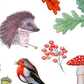 watercolor rabbit, robin, hedgehog, forest_animals