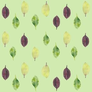 Leaves Moss Green