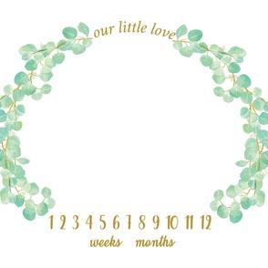 our little love grow mat