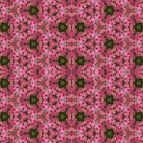 North Flower